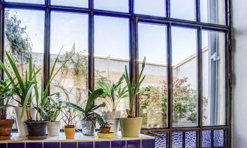 ma terrasse a marseille loft estaque jardin 11