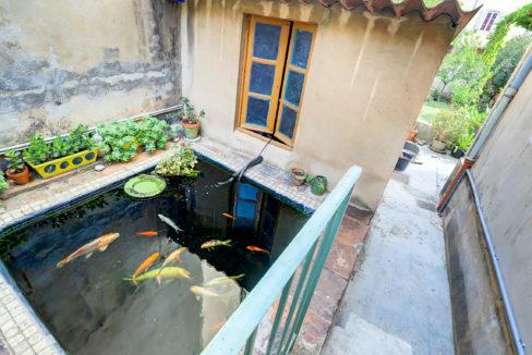 maison jardin marseille 4
